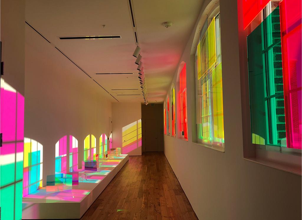 Christian Sampsons' Vita in Motu (2019) at Sarasota Art Museum